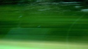 Traffic Landscape. Green Landscape seen out of a fast Car Stock Images