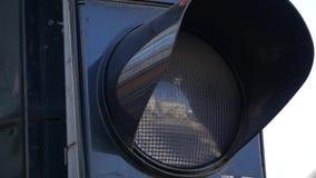 Traffic Light close up. Background stock video