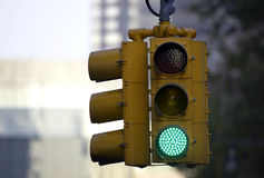 Traffic light on green Stock Photography