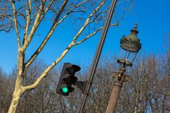 Traffic light, lantern, tree against the blue sky in spring in Paris royalty free stock images