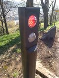 Traffic light in red in the forest Royalty Free Stock Photos