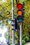 Traffic light red-yellow on a background of leaves and trees Stock Photo