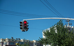 Traffic light showing red signal and time counter. Stock Photography