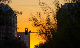 Traffic light' sunset. On the street of Astana Royalty Free Stock Images