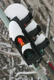 Traffic light under snow Royalty Free Stock Photo