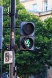 Traffic lights светофор Royalty Free Stock Images