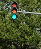 Traffic lights - Stock Photography