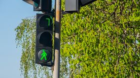 Traffic lights with the green light lit Stock Photography