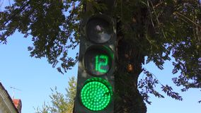 Traffic lights at the intersection. Produces a countdown stock footage