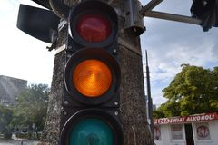 Traffic lights on the street. Blue skay and green tree Stock Image