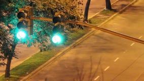 Traffic lights stock video