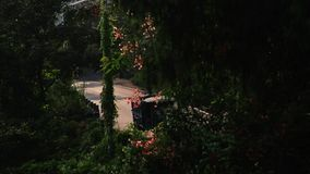Traffic in the morning. Handheld shot of morning traffic in a tropical country stock video footage