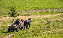 Traffic in mountainous rural area in summer. Pylypets, Ukraine - May 01, 2017: traffic in mountainous rural area in summer. wooden cart with two horses and two Royalty Free Stock Images