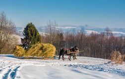 Traffic in mountainous rural area in winter. Pilipets, Ukraine - December 21, 2016: traffic in mountainous rural area in winter. cart with two horses loaded with Stock Photography