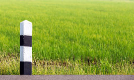 Traffic post on the road and rice field background Royalty Free Stock Image