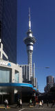 Traffic on Queen street with the Skytower in the background - Ne Royalty Free Stock Photo