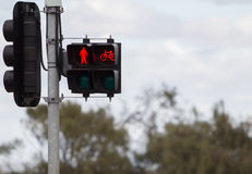 Traffic red light. For human and bicycle Royalty Free Stock Photos