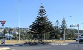 Traffic roundabout in Australian city, Coffs Harbour. Stock Image