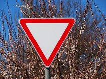 Traffic sign. On the background of a flowering tree royalty free stock photography