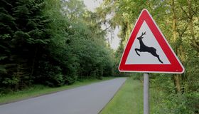 Traffic sign - deer crossing Royalty Free Stock Photo