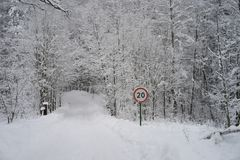 Traffic sign in the forest full of snow Royalty Free Stock Photo