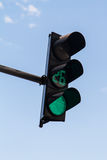 Traffic Sign on Green Stock Photography