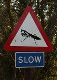 Traffic Sign. A Traffic Sing in Gibraltar warns to go slow for Praying Mantas Stock Image