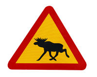 Traffic sign warning for moose Royalty Free Stock Images