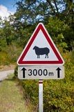 Traffic sign warning of sheep on the road Royalty Free Stock Photography