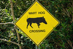 Traffic sign wart hog crossing Royalty Free Stock Images