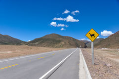 Traffic sign : Watch for  Alpagas!!, Bolivia Stock Photography