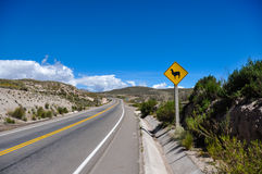Traffic sign : Watch for  Lamas!!, Bolivia Royalty Free Stock Photography