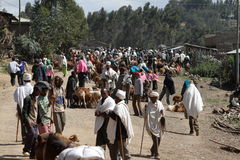 The traffic in the streets of Debark in Ethiopia Stock Image