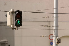 Traffic walk. The green traffic lights in a row Stock Photo