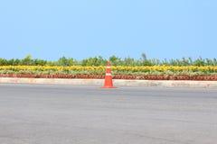 Trafikera kotten på vägen med blomman och seascape som bakgrund Royaltyfri Foto