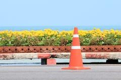 Trafikera kotten på vägen med blomman och seascape som bakgrund Fotografering för Bildbyråer