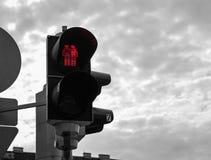 Trafikljus av Wien arkivbilder