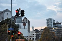 Trafikljus och tak i Auckland arkivfoto