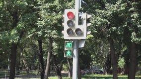 Trafikljuset för gångare från den röda signalen kopplar för att göra grön stock video