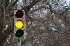 Trafiksignal, gult ljus Royaltyfri Bild