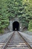 Traforo di ferrovia con fogliame Fotografia Stock