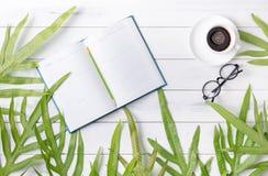 Tragen Sie Buch und Kaffee mit grünem Farnblatt ein Lizenzfreie Stockfotografie