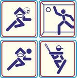 Tragen Sie Fußball, Rugby, Baseball, Handballikonen zur Schau Lizenzfreies Stockbild
