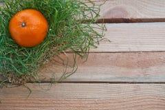Tragen Sie im Gras auf einem hölzernen Hintergrund Früchte Stockfotografie