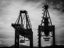 Tragen Sie Kräne in Algecieras, Spanien im wolkigen Wetter stockfotos