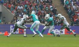 Tragen Sie Reihenspiel ew York internationales Jetgegen die Miami Dolphins zur Schau Stockbilder