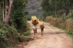 Tragende Eingaben der Malagsy Leute auf ihren Köpfen Stockbild
