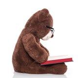 Tragende Gläser des Teddybären und Ablesen eines Weihnachtsgeschichtenisolats Stockfotografie