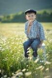 Tragende Jeans und Hemd des netten hübschen Jungen, die auf Holzstuhl auf Wiese des Kamillengänseblümchens sitzt und Sommertag he Stockbild