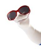 Tragende Sonnenbrille der lustigen Sockenmarionette Lizenzfreie Stockfotos